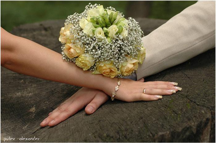 основа брачного союза