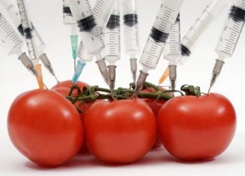 ГМО риски употребления