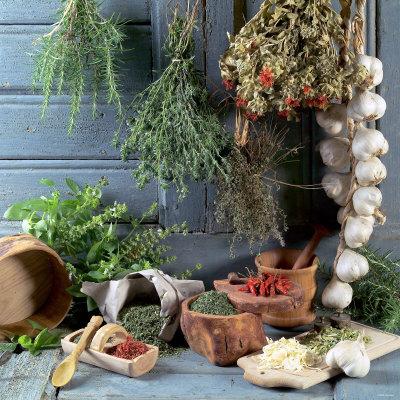 Правила заготовки и хранения лекарственных трав