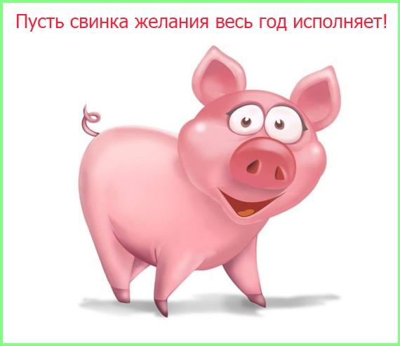 свинка исполняет желания