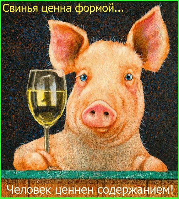 свинья ценна формой