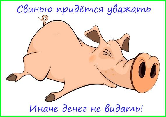 свинью придётся уважать