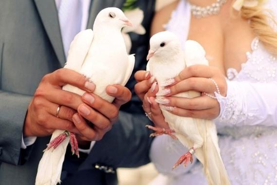 запустить вместе в небо голубей